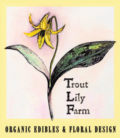 Trout Lily Farm Logo